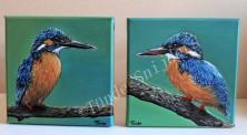 IJsvogelpaar, 20x20 cm. Niet te koop.