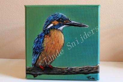 Blije IJsvogel, 20x20 cm. Verkocht.