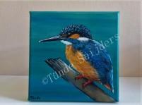 IJsvogel Robert, 20x20 cm. Verkocht.