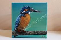 IJsvogel vrouwtje wachtend, 20x20 cm, het is verloot op FB.