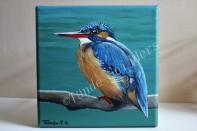 IJsvogel vrouwtje, 20x20 cm. Verkocht.