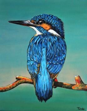 IJsvogel, 24x30 cm, niet te koop