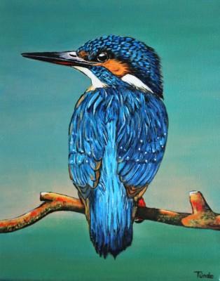 IJsvogel op tak (4)