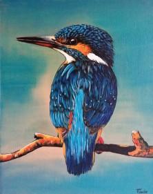 IJsvogel op tak (2)